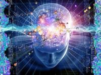 Kaos ili božanska inteligencija