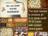world+hunger