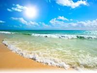 Vječne sunčane obale