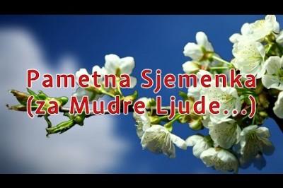 Pametna Sjemenka (za mudre Ljude...)